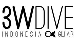 3W DIVE
