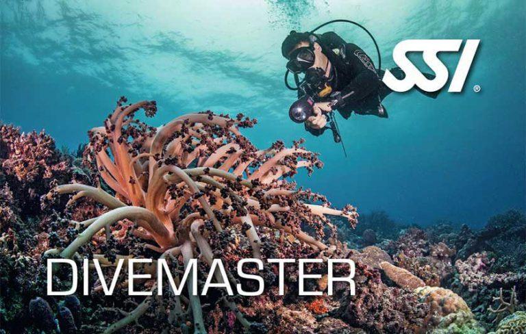 scuba diving courses Gili Air
